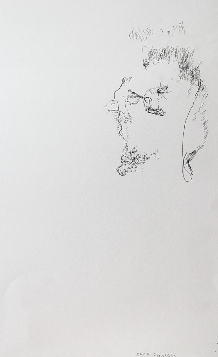 david finnigan